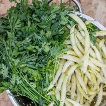 איך תקיפו את תזונתכם בעלים ירוקים?